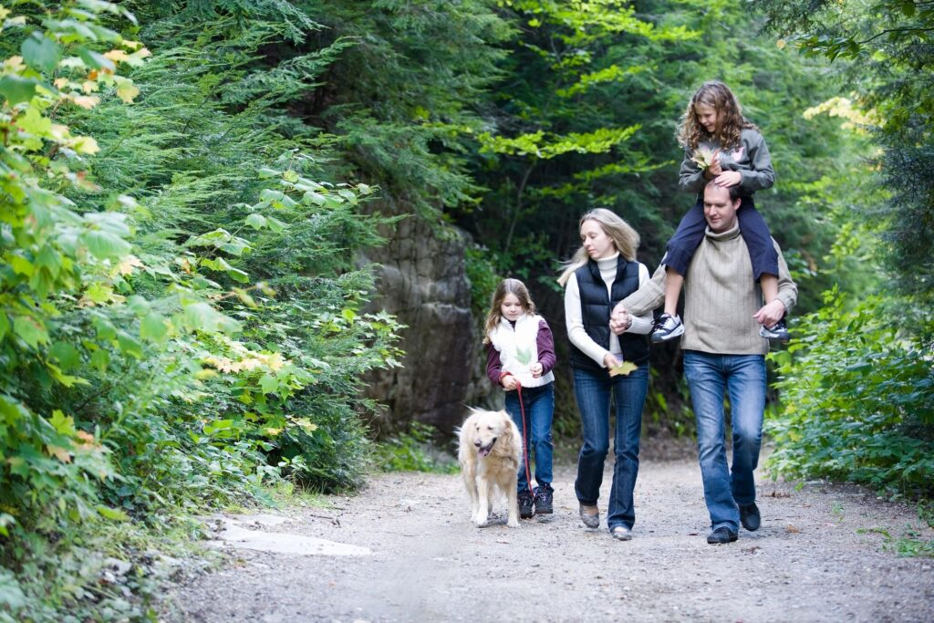 family walking in the wood